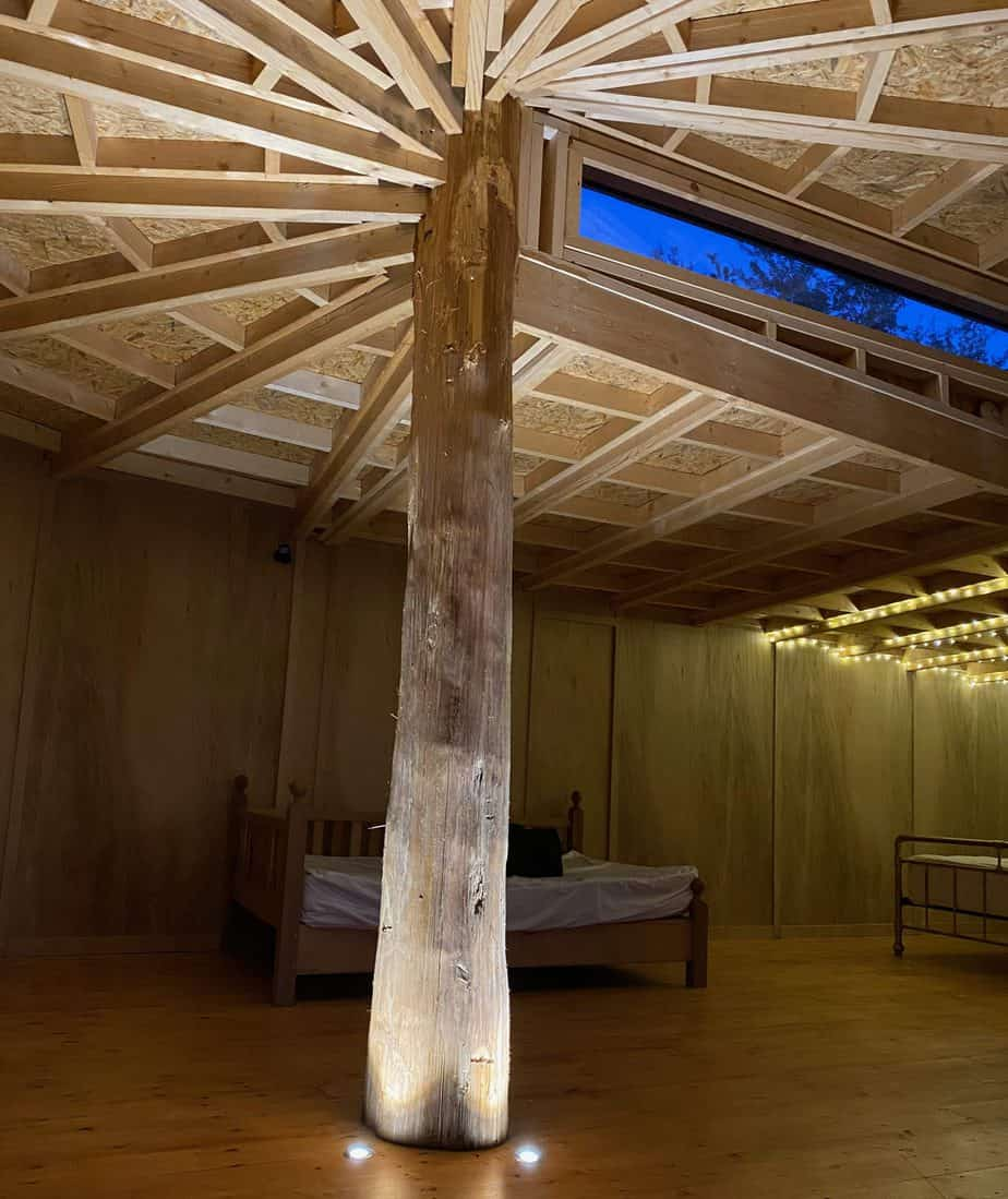 inside cedar yurt showing central supporting trunk